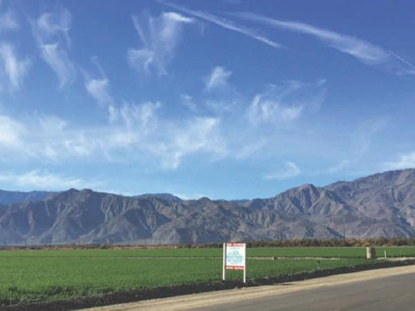 628.77 AC Hemp Farmland, Thermal, CA