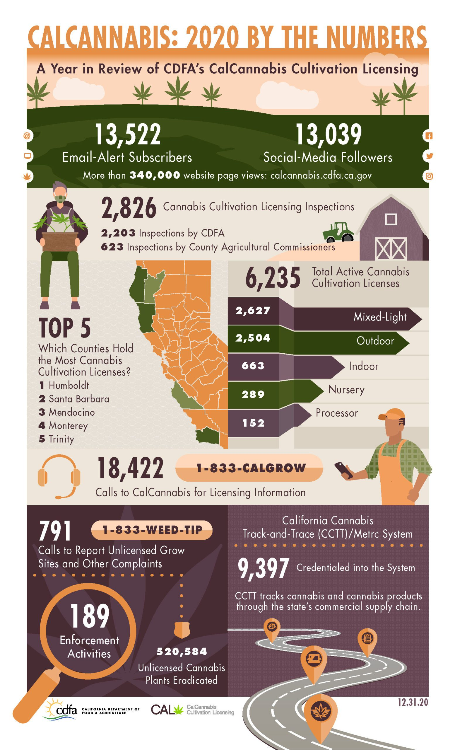 infographic of calcannabis 2020 by the numbers