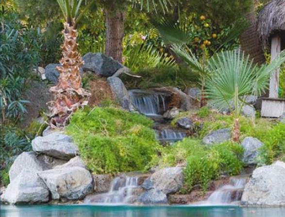 image with lagoon and trees of 20 ac corona yacht club